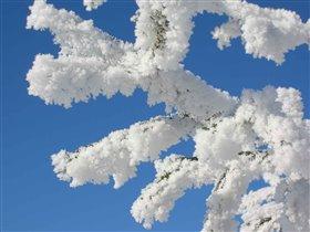 Суровая уральская зима 2006 года