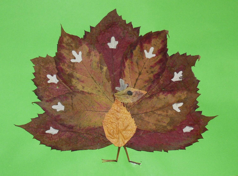 Поделки из листьев или природного материала 72
