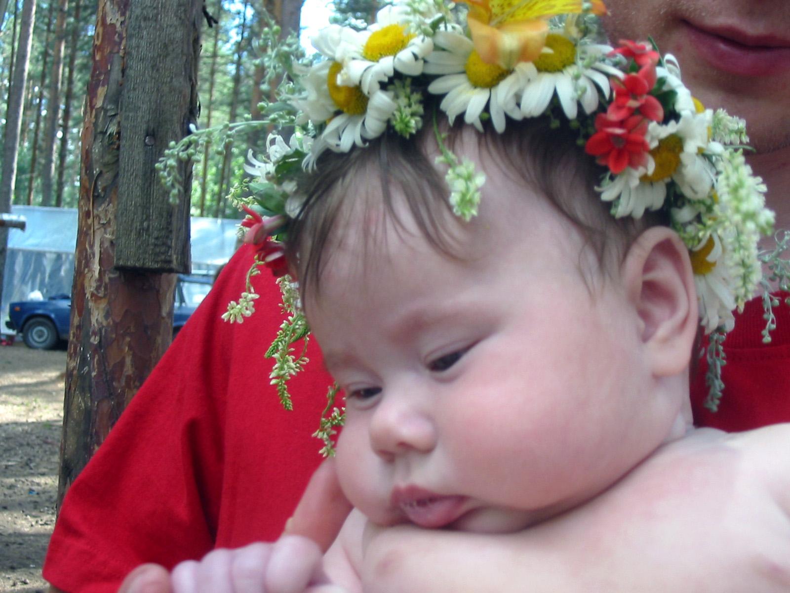 Лесная фея Сонечка. Лето - это маленькая жизнь