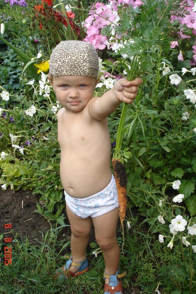 Вот какая морковка растет у бабушки в огороде! :). Лето - это маленькая жизнь