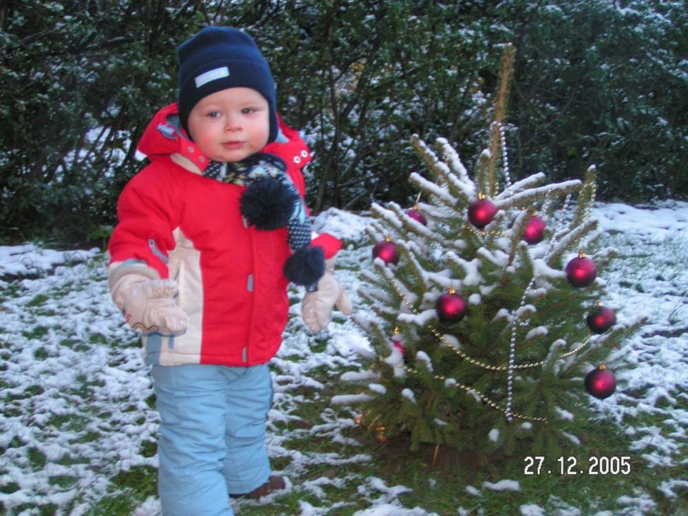 Или елка мала или я большой..... В лесу родилась елочка