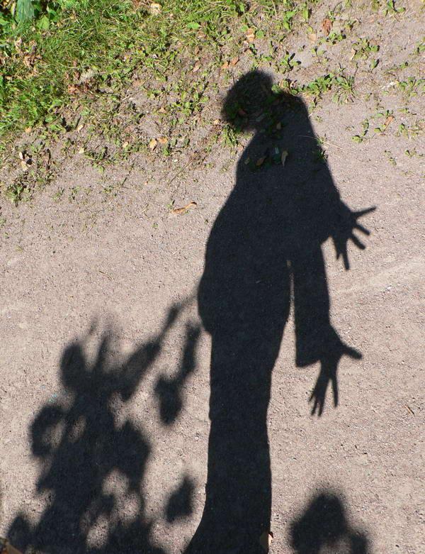 Моя беременная тень. Счастлива, потому что беременна