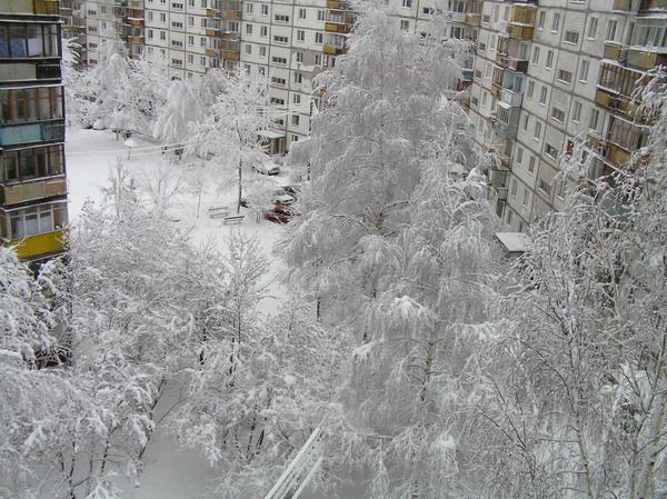 из окошка . Зима за окном