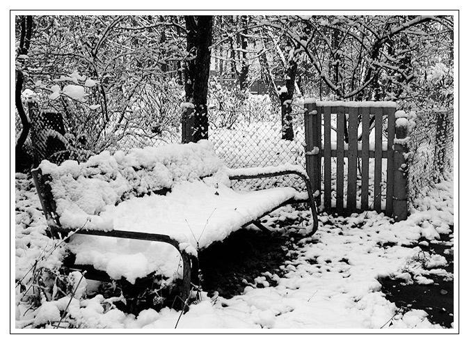 Первый снег. Зима за окном