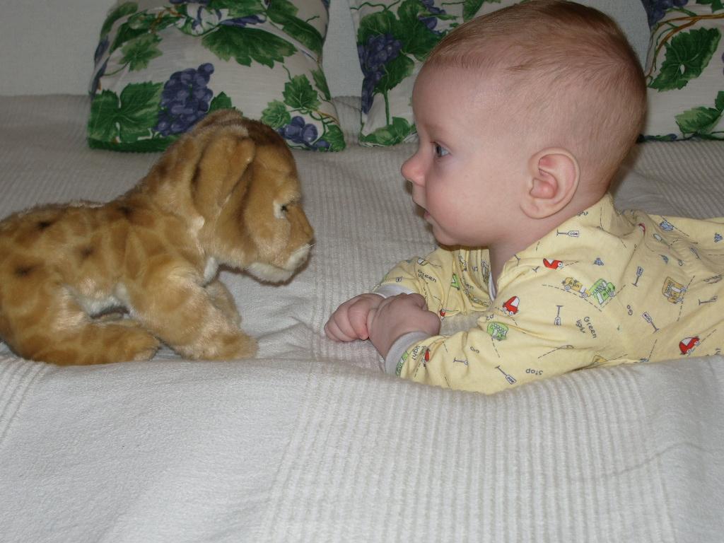 Лев и львенок. Что наша жизнь? Игра!