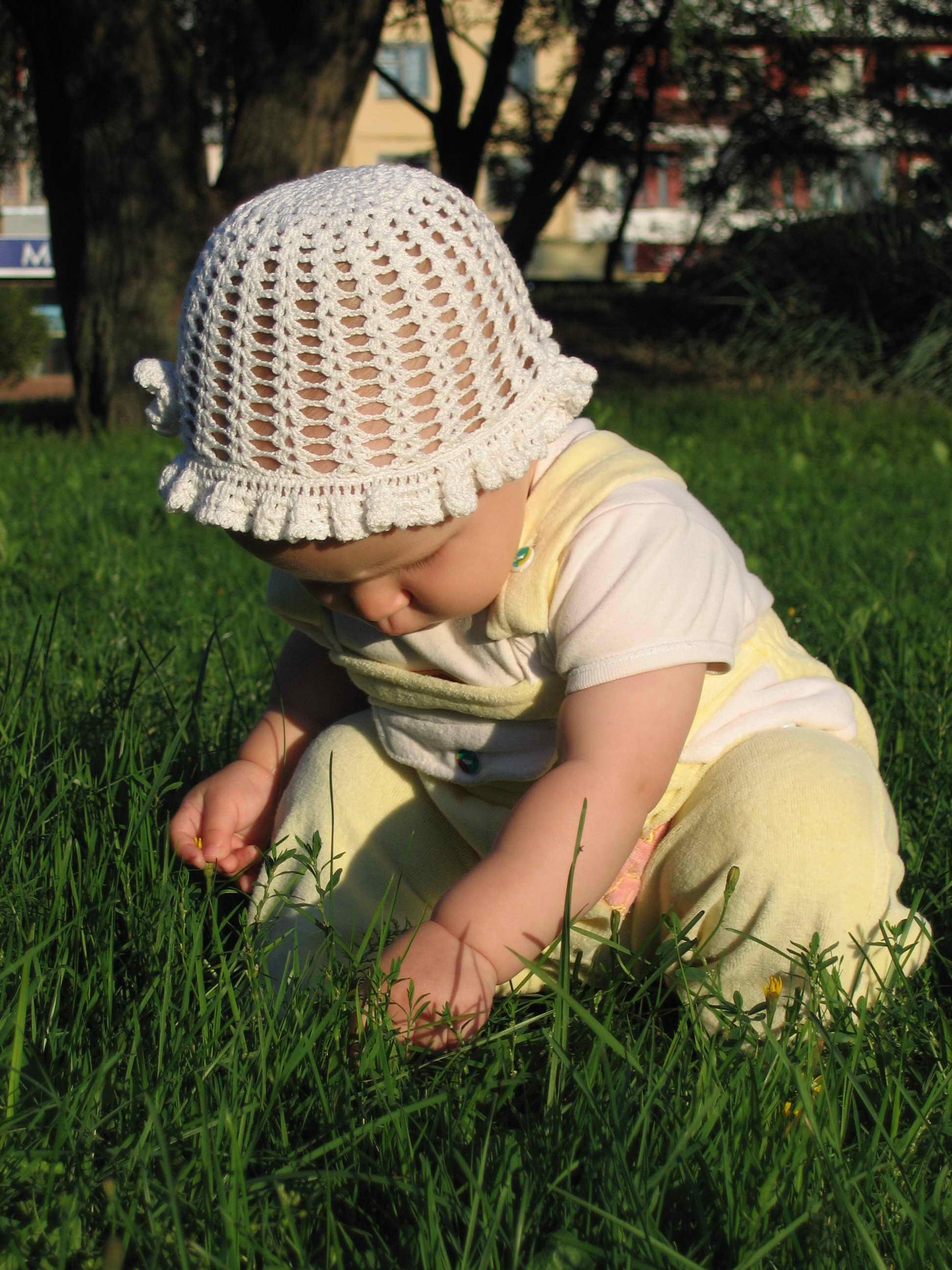 Ботаника - моё призвание. Живописцы, окуните ваши кисти!
