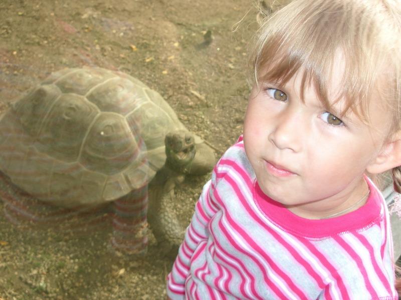 август 2005г., Московский зоопарк. Ребята и зверята