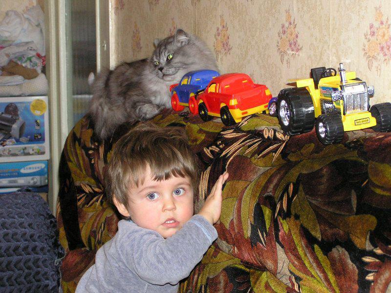 Мальчик Саша и кот Сёма. Ребята и зверята