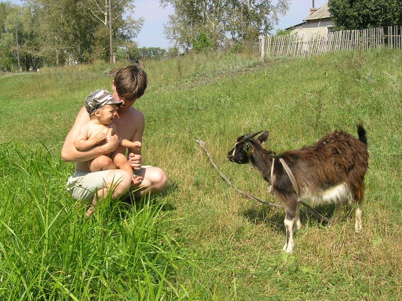 Идет коза рогатая.... Ребята и зверята