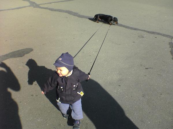 Как хорошо иметь щенооочка, чтобы водить его на поводоооочке!. Ребята и зверята