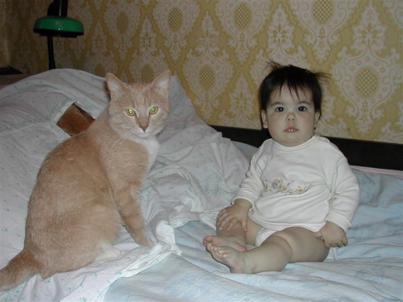 Две котявки. Ребята и зверята