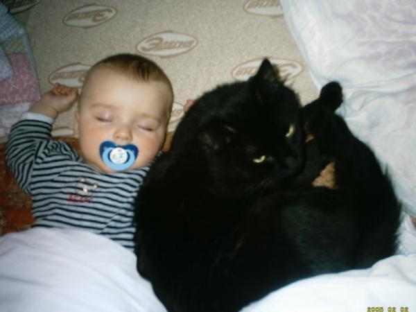 мой любимый сынок и  любимый котёнок. Ребята и зверята