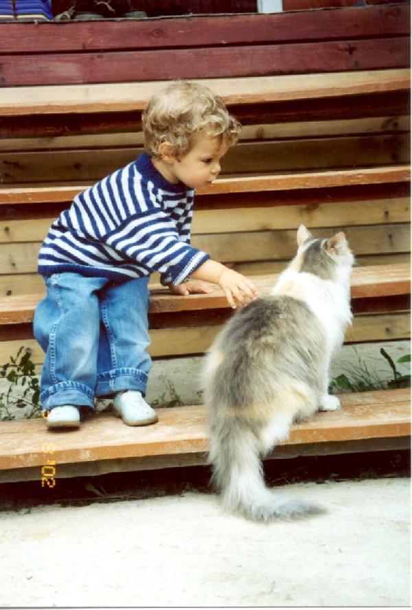 Человек и Кошка. Ребята и зверята