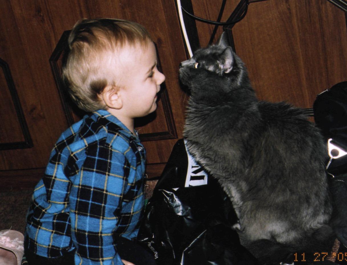 Егорка с Кузьмой. Ребята и котята