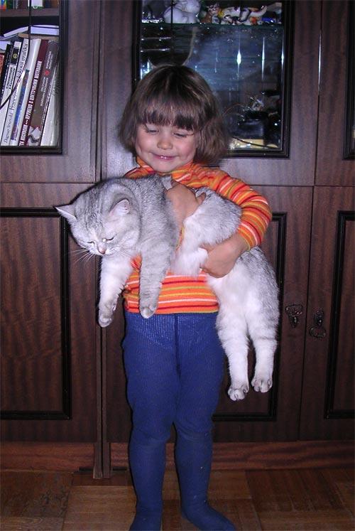 Котёнок, говорите?. Ребята и зверята