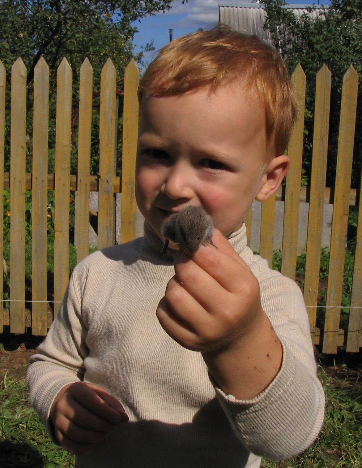 Артемкин друг -мышонок!!. Ребята и зверята