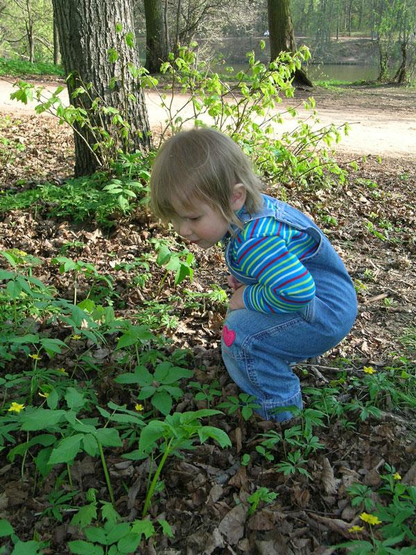 А не заняться ли ботаникой?... Это сладкое слово - прогулка!..