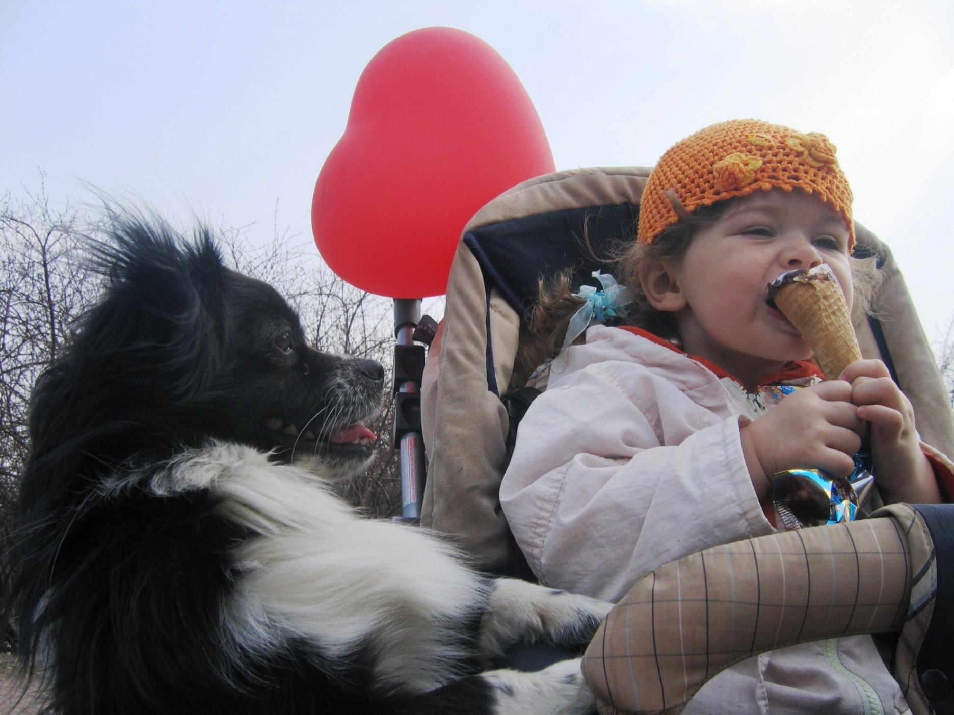 Гав, Катюшка, дай и  мне сладенького.... Это сладкое слово - прогулка!..