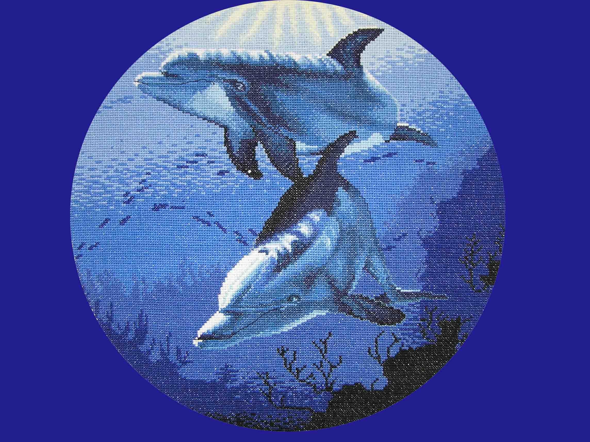 поражает сочные дельфины от дименшенс картинки ритуальных услуг является