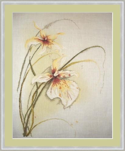 Орхидеи 'Lanarte'. Вышивальный конкурс 'Я цветочки вышивала...'