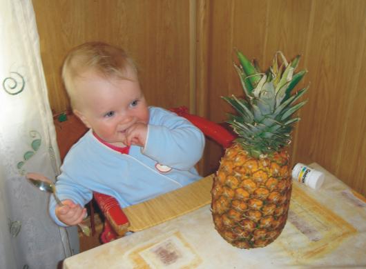 А ананасы ложкой едят?. Крошка с ложкой