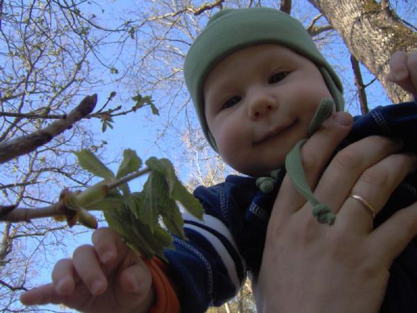 Юный натуралист!. Это сладкое слово - прогулка!..