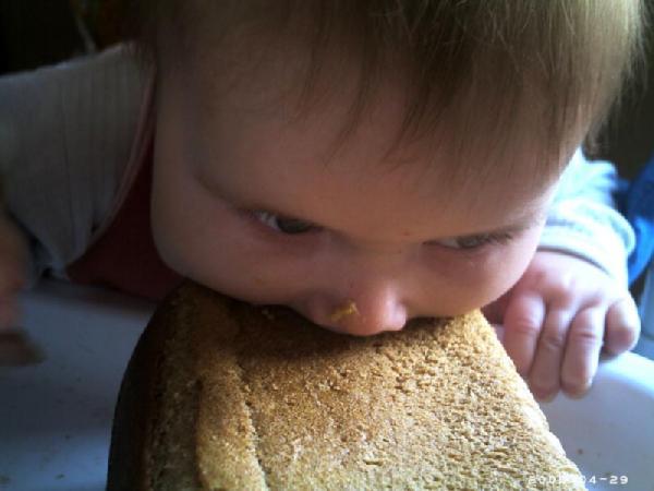 Голод - не тетка. Крошка с ложкой