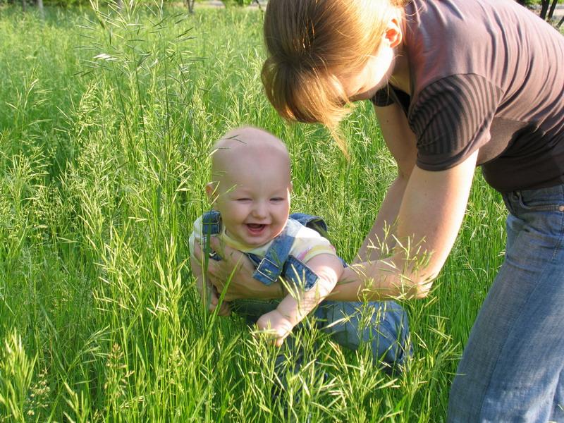 Изучение городской флоры в 6 месяцев ;-). Юный натуралист