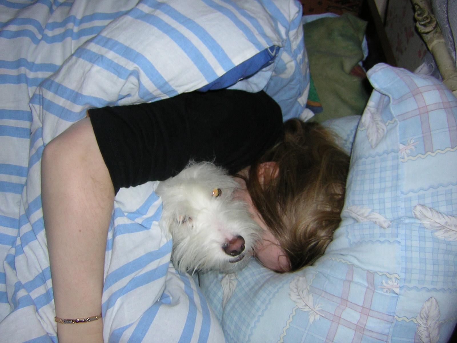 спи, хозяйка! я постерегу!. Дай лапу,  друг