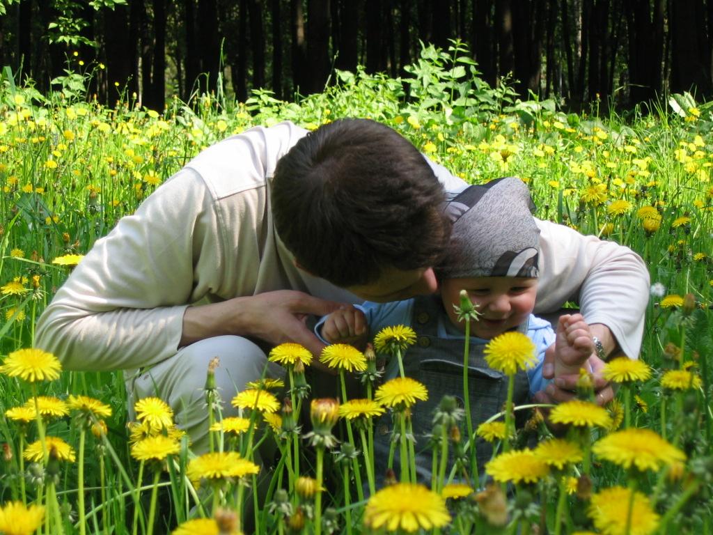 Соберем цветов мы сами, а потом подарим маме!. Лето, ах лето!..