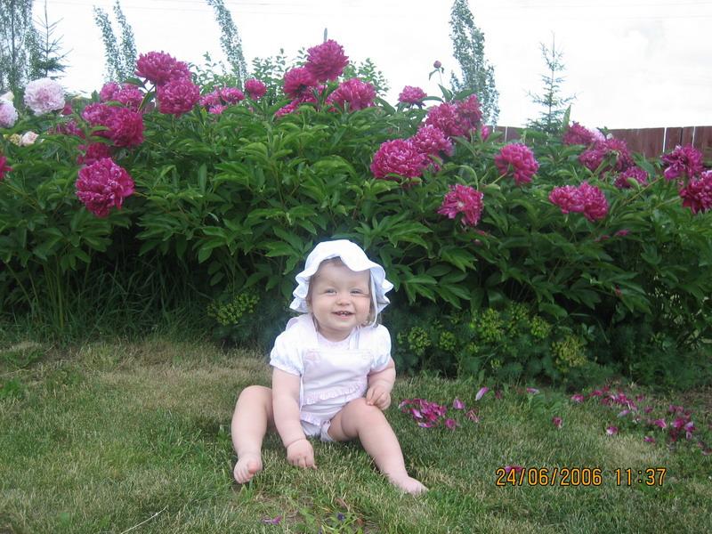 Наша кокетка среди цветов. Лето, ах лето!..