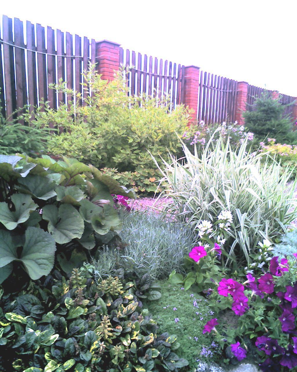 дом сад огород