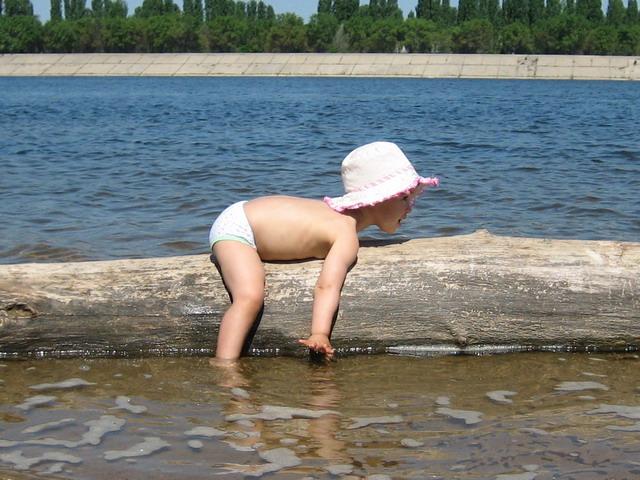 А я плавать на бревне умею. Лето, ах лето!..