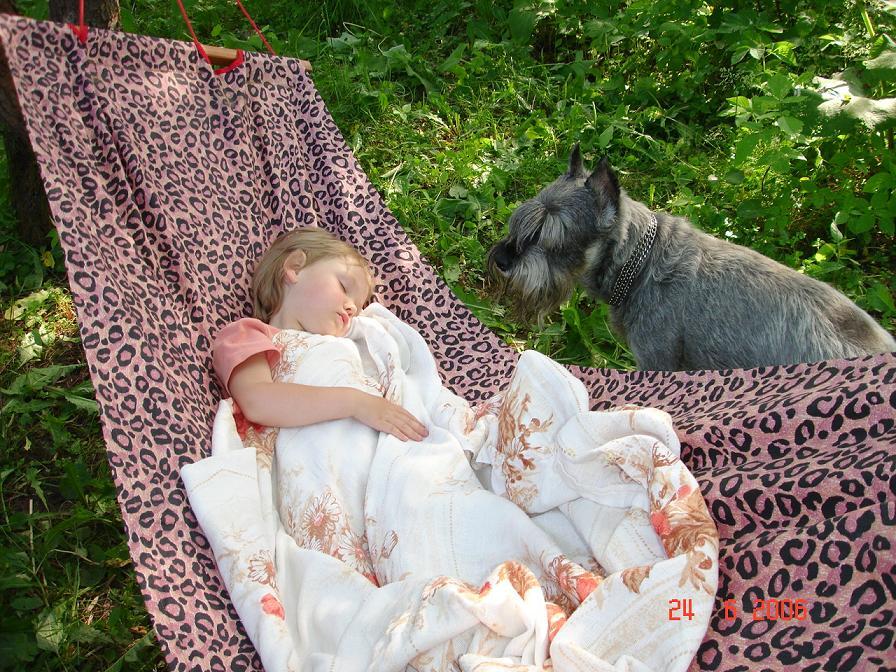 'Ну, вроде уснула, пойду и сам подремлю!' :). Лето, ах лето!..