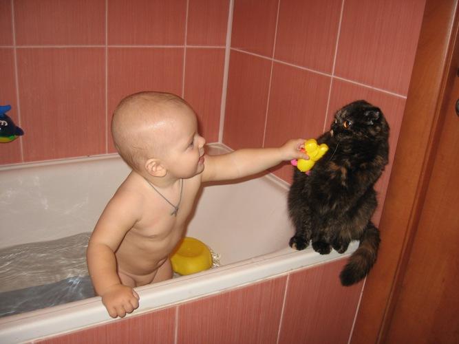 Муся, поиграй со мной. Купание в ванной