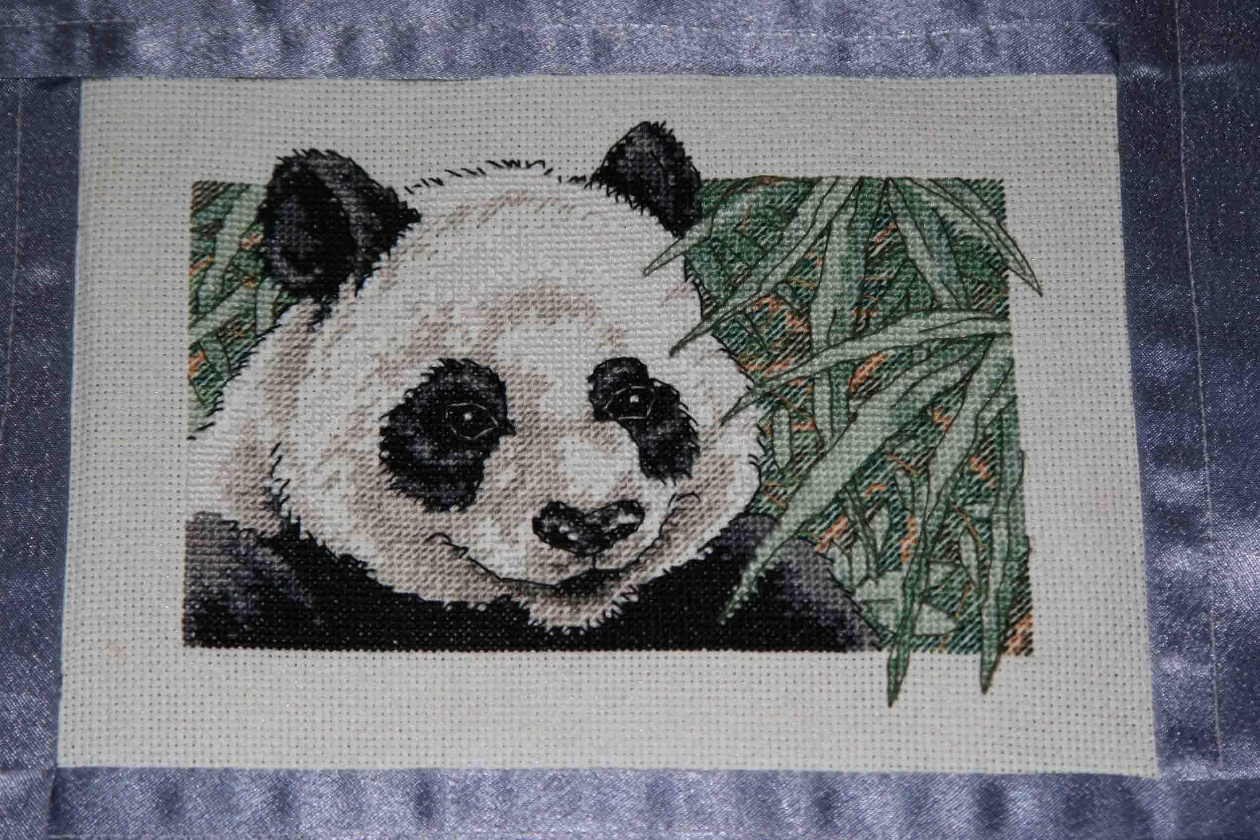 панда. Животные