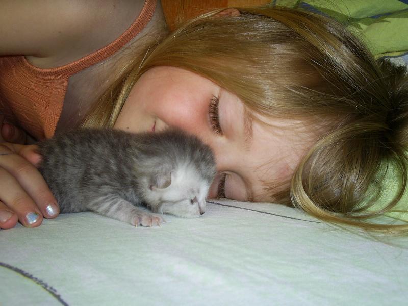 Счастье. Закрытое голосование фотоконкурса 'Ребята и котята'