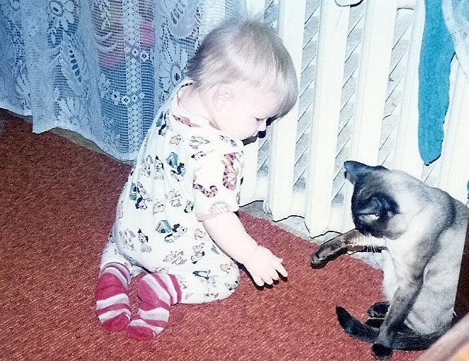 Лапопожатие.. Ребята и котята
