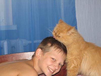 мой котенок. Ребята и котята