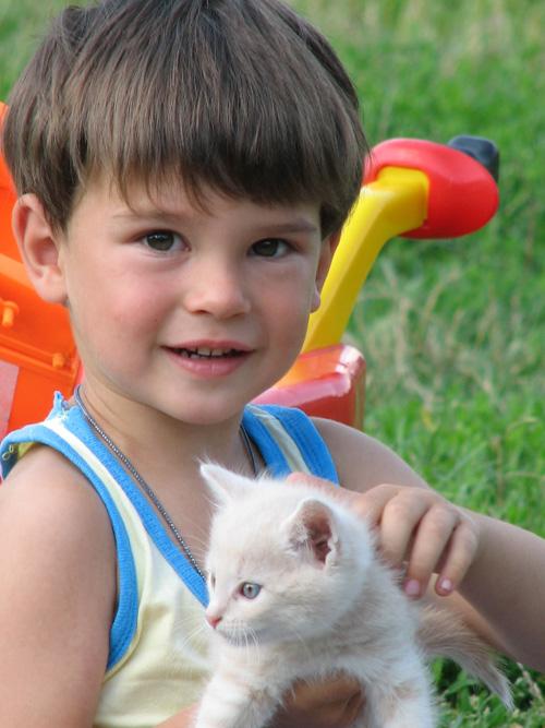 Стасик и Маруся.. Ребята и котята