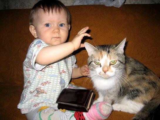 атас!. Ребята и котята