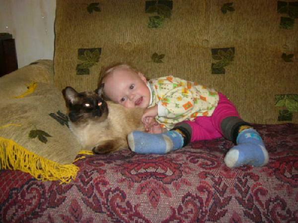 Тайсон - друг ребенка. Ребята и котята