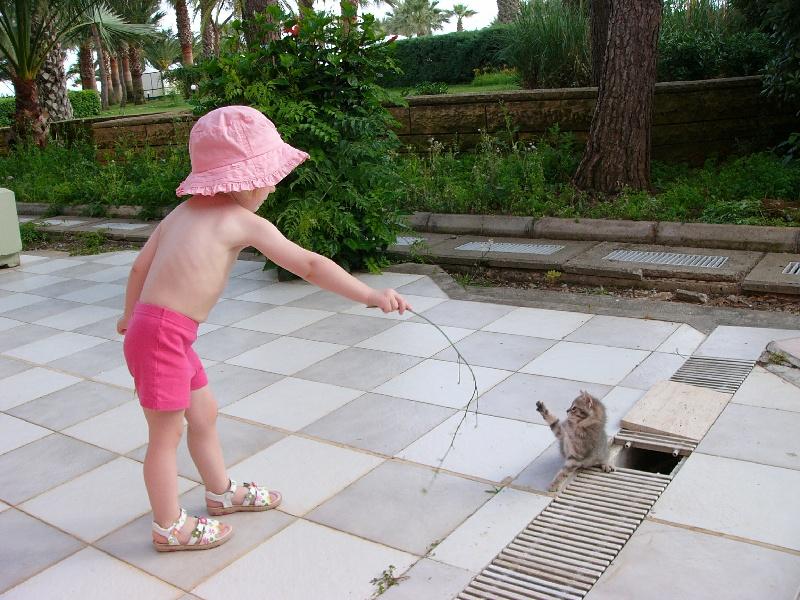 Давай поиграем?!. Ребята и котята