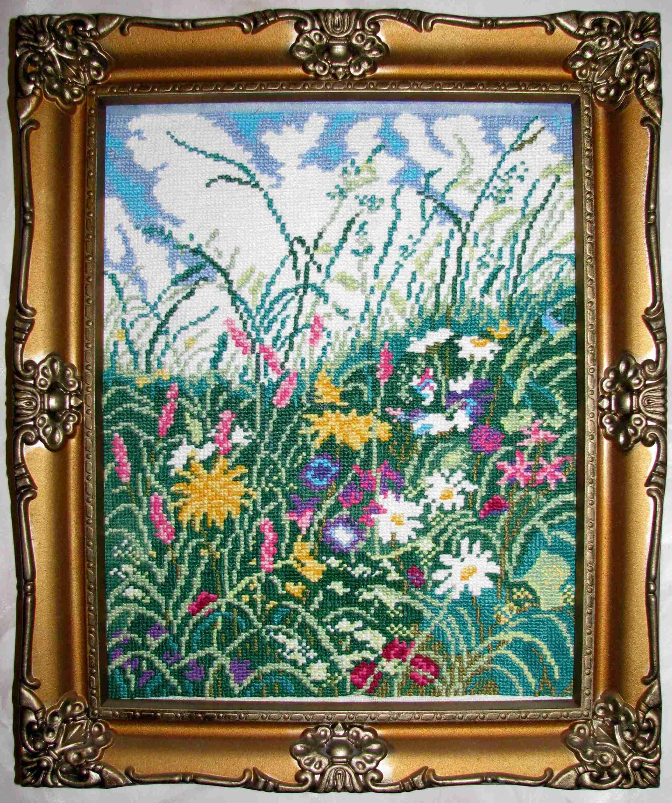 Луговые цветы. Растения (в основном цветы)