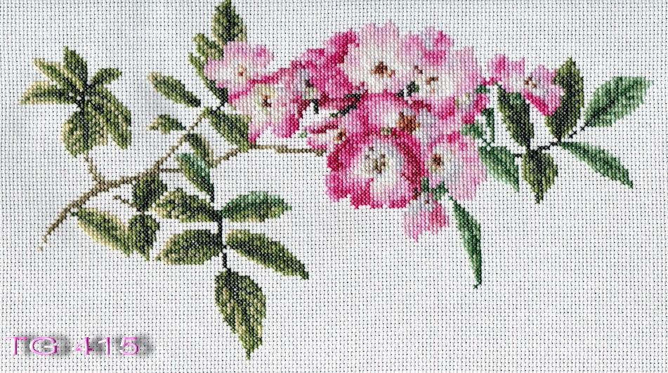 TG415. Растения (в основном цветы)