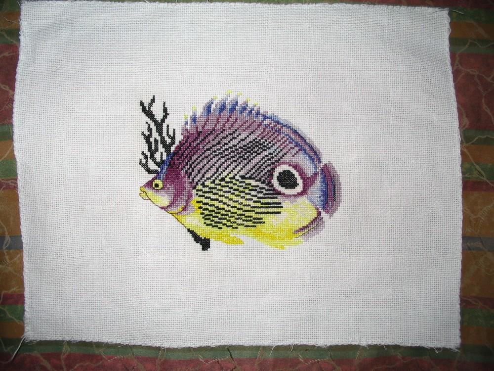 рыбка от РТО. Рыбы и другие обитатели глубин