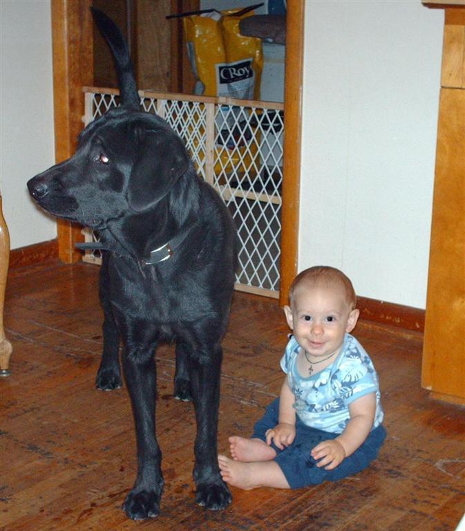 Пес и его мальчик. Друзья