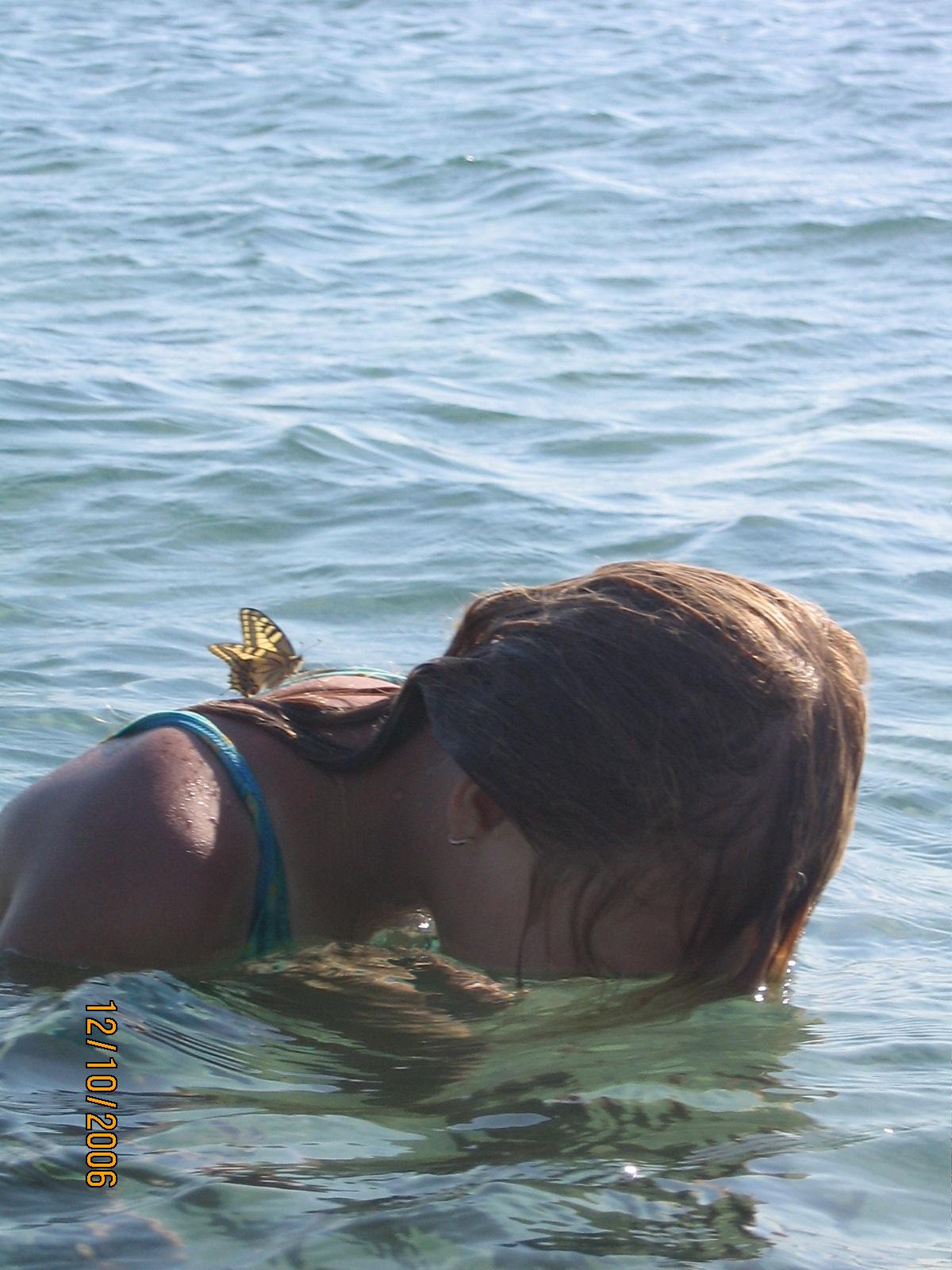 бабочка. Отдых у воды