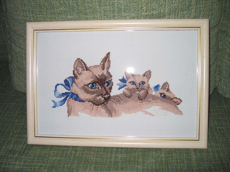 Кошки. Животные