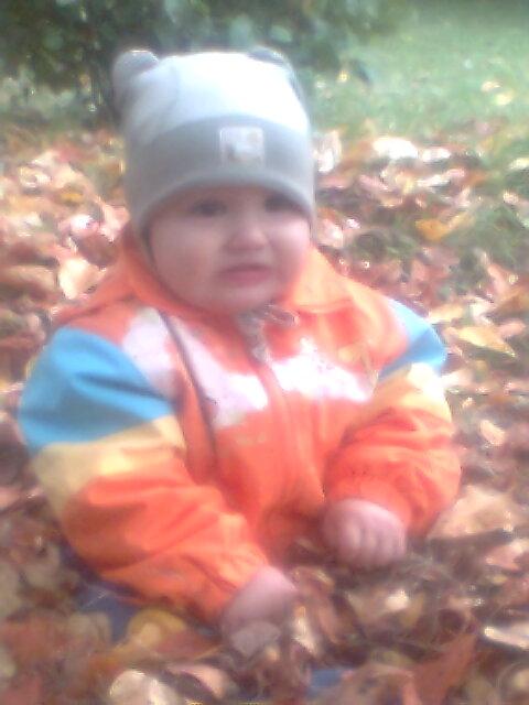 Вот и осень наступила.. Дети на прогулке